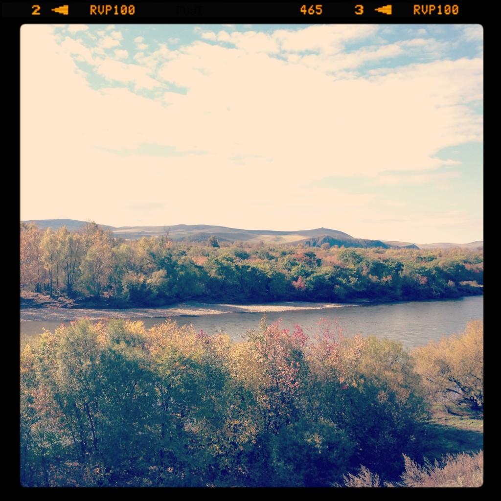 根河 河畔